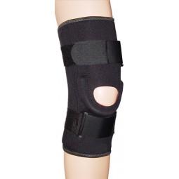 Prostyle Stabilized Knee...