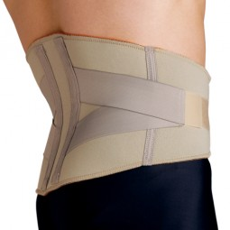 Blue Jay Lumbar Support Md...