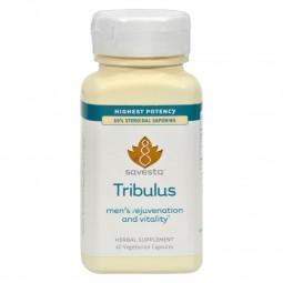 Savesta Tribulus - 60...